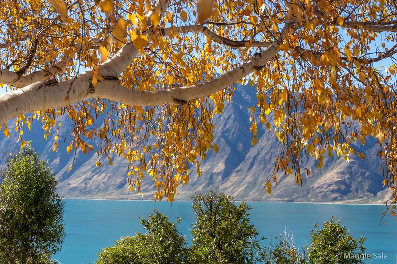 Lake Hawea north of Wanaka