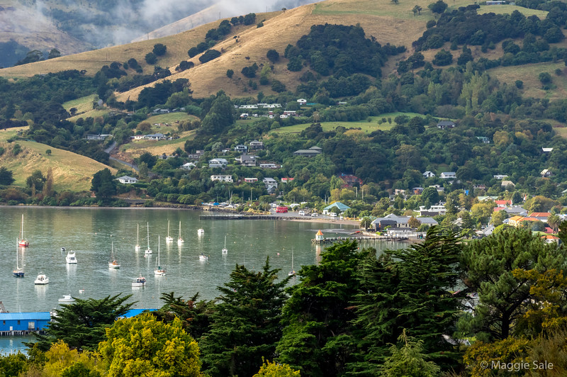 After the latest rain shower in Akaroa from the hills beyond.