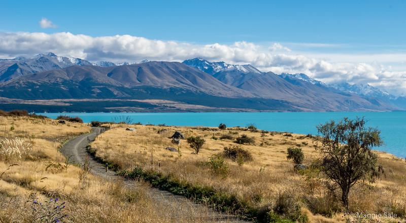 Lake Pukaki. Mount Cook NP on the right side, far shore