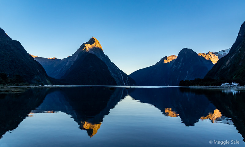 "Milford Sound early morning ""blue hour"" with the rising sun hitting the mountain tops. Luckily it was also high tide which gave us the reflections and another cloudless day!"