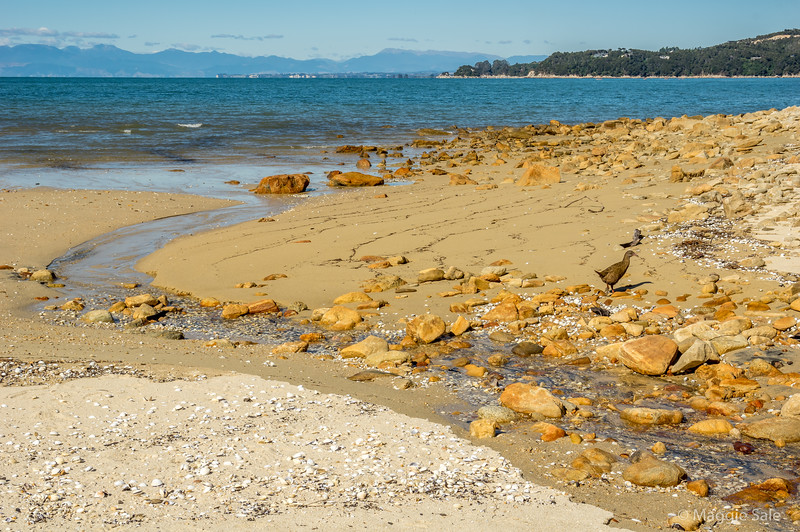 Walk along the coastal path in Abel Tasman NP.
