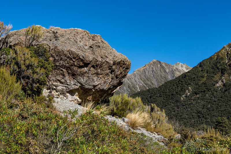 Leaving the coast and taking the road across the southern alps again via Arthur's Pass - this is at the top of the pass.