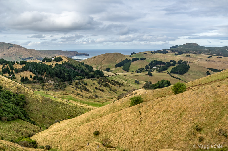 "The inland ""High Road"" across the Otago Peninsula with view to the south."