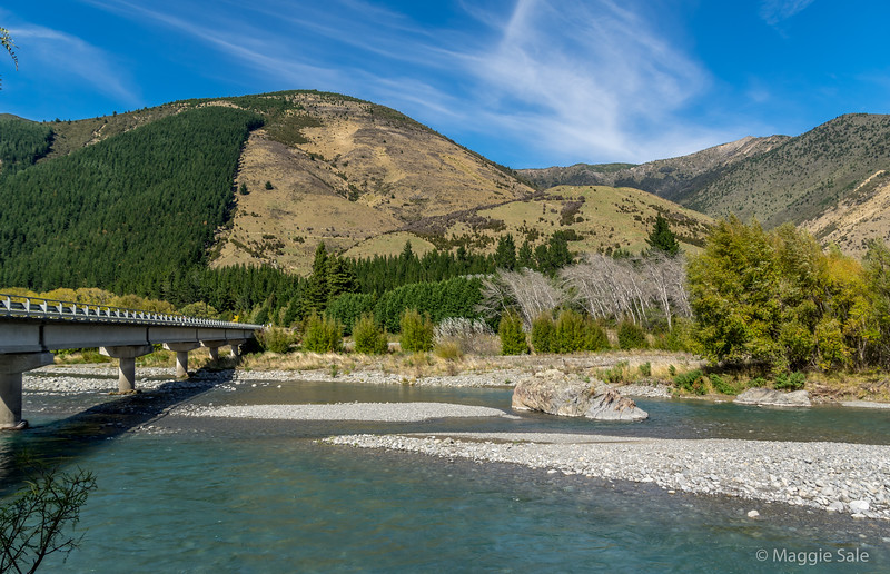 The route took us down the Wairau Valley which was lovely, with huge sheep and cattle ranches, followed by the wine growing region of Malborough with hills all around.