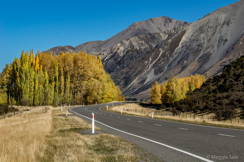 The river opens out after the pass and there are great views as the road gradually descends to the plains outside Christchurch