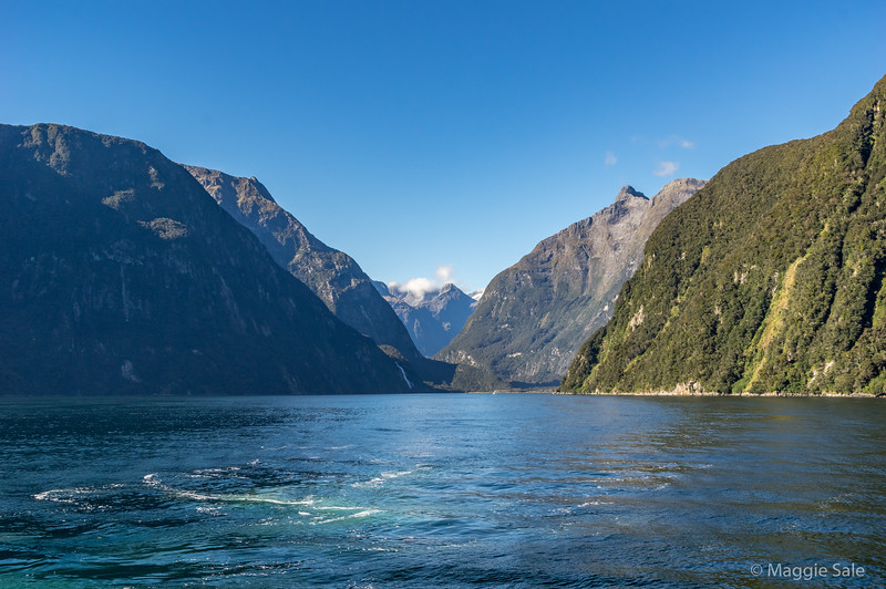 Heading back from the Tasman Sea into Milford Sound.