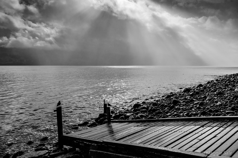 Gods rays in the channel leading to Akaroa.