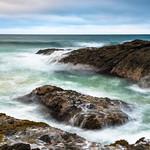 Tasman Colors