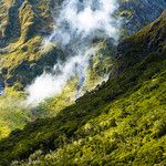 Fiordland Mountainside
