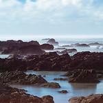 Tasman Coast