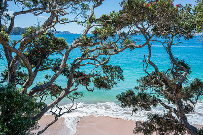 Hahei Beach | Hahei, NZ