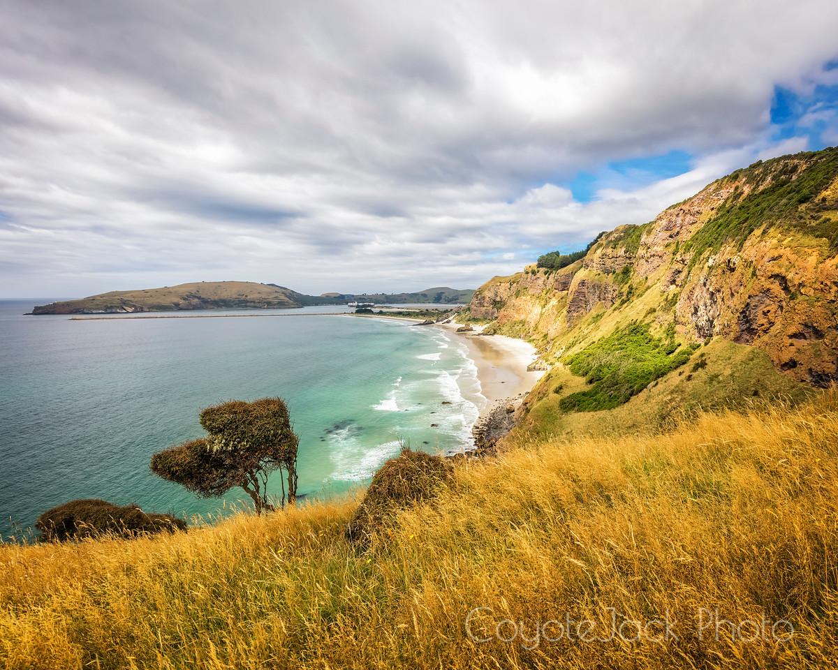 Aramoana Cliffs