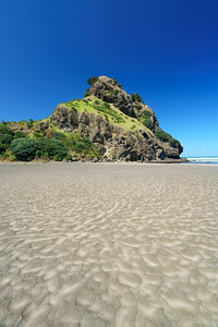 Lion Rock | Piha, NZ