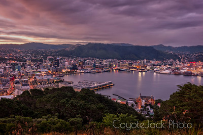 Wellington sunset