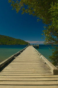 Ship Cove, Queen Charlotte track