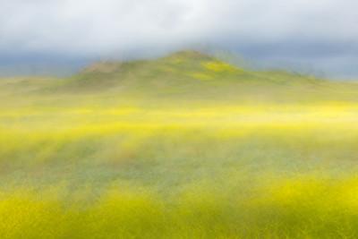 Motion Blur, Hills, Irvine Ca.