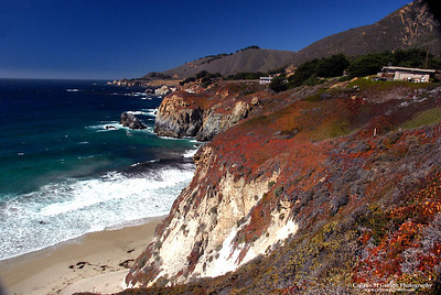 Pacific Coast Near Big Sur © 2009 Colleen M. Griffith. All Rights Reserved.  This material may not be published, broadcast, modified, or redistributed in any way without written agreement with the creator.  This image is registered with the US Copyright Office. Friend Colleen on Facebook