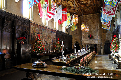 Hearst Castle Dining Hall © 2009 Colleen M. Griffith. All Rights Reserved.  This material may not be published, broadcast, modified, or redistributed in any way without written agreement with the creator.  This image is registered with the US Copyright Office. www.colleenmgriffith.com www.facebook.com/colleen.griffith