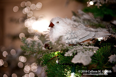 Peace On Earth © 2010 Colleen M. Griffith. All Rights Reserved.  This material may not be published, broadcast, modified, or redistributed in any way without written agreement with the creator.  This image is registered with the US Copyright Office. www.colleenmgriffith.com www.facebook.com/colleen.griffith