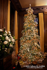 Holiday Cheer ©  2010 Colleen M. Griffith. All Rights Reserved.  This material may not be published, broadcast, modified, or redistributed in any way without written agreement with the creator.  This image is registered with the US Copyright Office. www.colleenmgriffith.com www.facebook.com/colleen.griffith