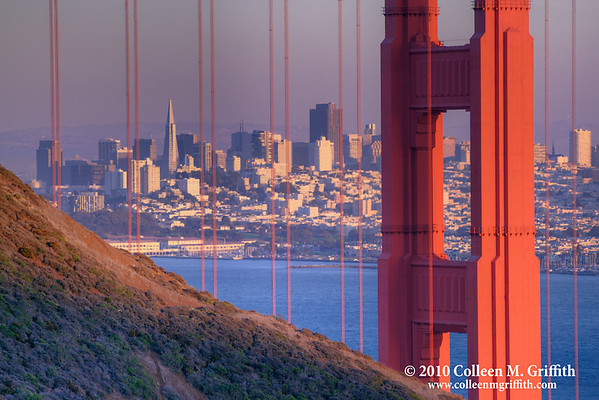 """Two San Francisco Icons At Sunset<br /> ©  2010 Colleen M. Griffith. All Rights Reserved.  This material may not be published, broadcast, modified, or redistributed in any way without written agreement with the creator.  This image is registered with the US Copyright Office.<br /> <br /> TransAmerica Building framed by the Golden Gate Bridge at sunset. This is a favorite framing of mine of the city's most iconic architecture.  It won recognition in on-line photo contests.  This is a version that I captured as the sun was setting - hence the purple/red cast to the photo. You can see more of my San Francisco photos, by going to:  <a href=""""http://www.colleenmgriffith.com/Galleries/San-Francisco/San-Francisco"""">http://www.colleenmgriffith.com/Galleries/San-Francisco/San-Francisco</a>"""