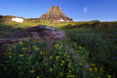 Clements Mountain & Wildflowers