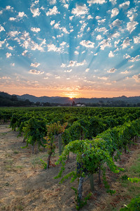 A summer sunset over Dry Creek Valley