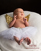 New born portrait with angel wings