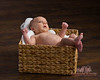 Happy Baby portrait in basket