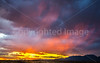New Mexico - Sunset over Sevilleta National Wildlife Refuge - D5-C3-0265 - 72 ppi