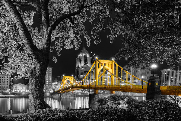 """Sprung Re-Envisioned (Selective Color)"" - Pittsburgh, North Shore   Recommended Print sizes*:  4x6  