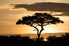 """Sunrise in the Mara"""