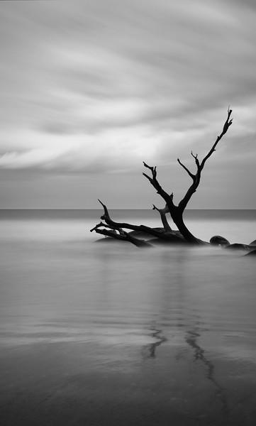 """""""Long Tide"""""""