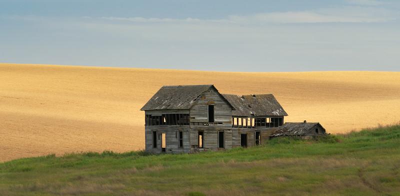 """Harvest Windows"""