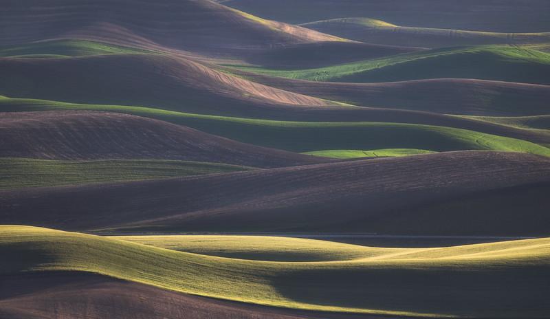 """""""Waves of Grain"""""""