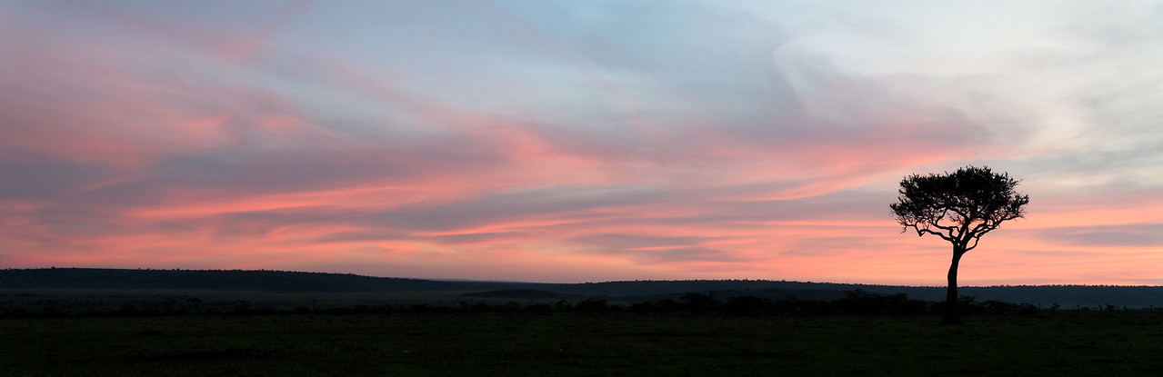 """""""Mara Sunrise Panorama"""""""