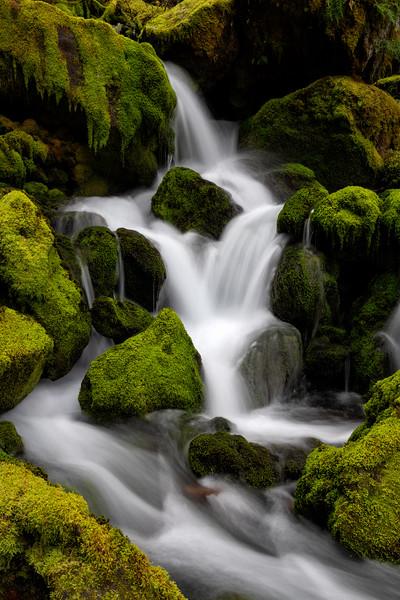 """Mossy Creek"""