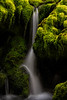 """""""Hidden Falls"""""""