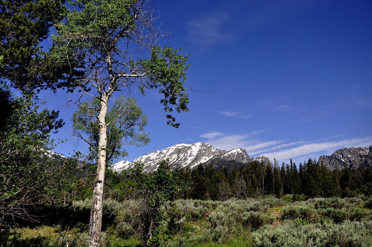Rocky Mtn National Park