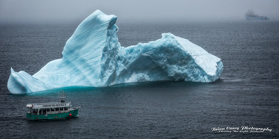 Iceberg at Useless Bay