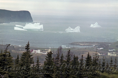 Ice Age at Flat Rock Newfoundland