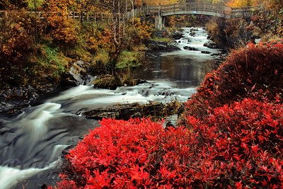 Fall at Rennies Mill River