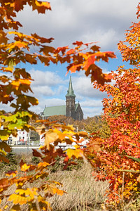 Fall View of St Pats