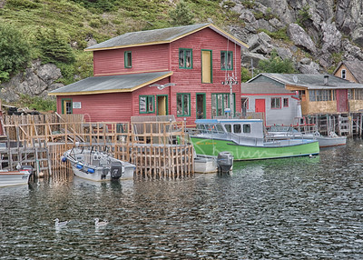 Peaceful afternoon, Quidi Vidi Village, Newfoundland