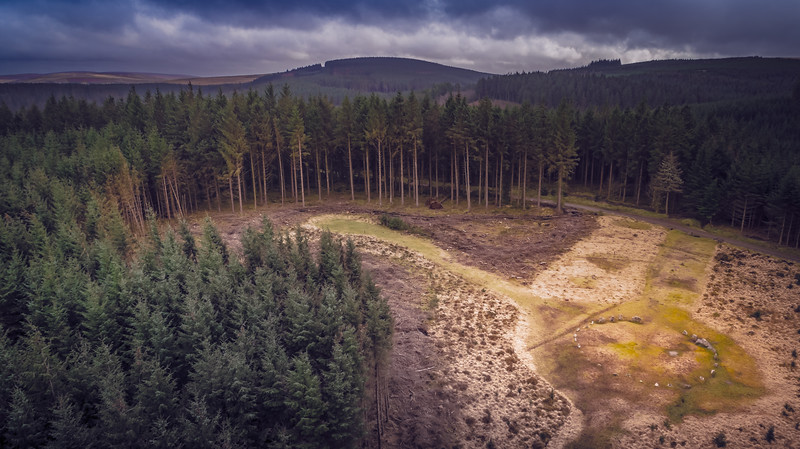 Aerial shot of Fernworthy Stone Circle, or Froggymead as it is sometimes known, a  Bronze Age circle of 27 granite slabs and blocks that stand in a clearing on a plateau of land within a Forestry Commission plantation about half a mile west of Fernworthy reservoir, Devon 2018