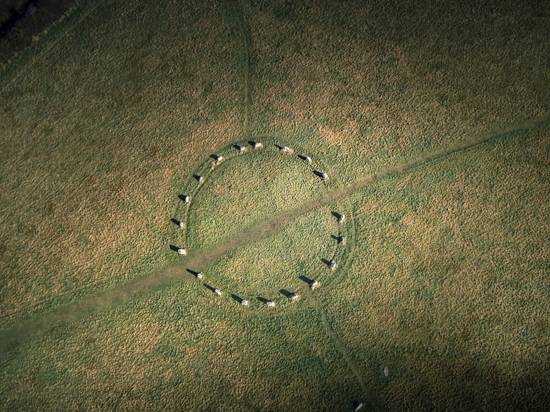 The Merry Maidens, (aerial) is a late neolithic stone circle located 2 miles to the south of the village of St Buryan, Cornwall 2018