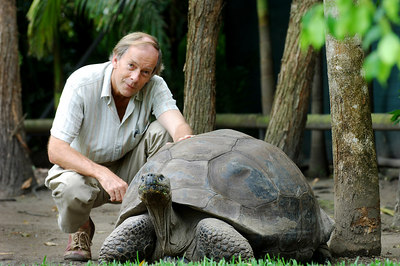 11 NOV 2005 SUNSHINE COAST, QLD, AUSTRALIA - Harriett the Galapagos tortoise celebrates her 175th birthday with Daily Mail correspondent Richard Shears.  She is the worlds oldest living animal and resides at Steve Irwin's Australia Zoo in Queensland, Australia - PHOTO: CAMERON LAIRD (Ph: +61 418238811)
