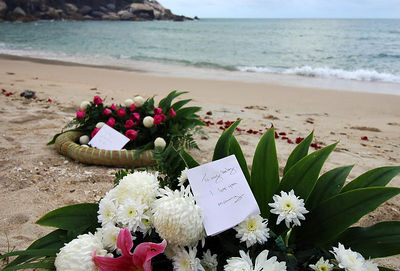 KOH SAMUI, THAILAND / 05 JAN 2006 - Murder of British backpacker Katherine Horton in Koh Samui, Thailand.  Katherine's father Iain and brother laid wreaths of flowers at the beach where Katherine's body was found - PHOTO: CAMERON LAIRD