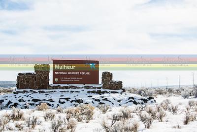 Malheur Wildlife Refuge
