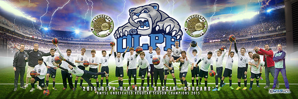 "TO BUY THE TEAM PHOTO PLEASE HIT THE YELLOW AND BLUE ""BUY NOW' TOP RIGHT OF PAGE<br /> <br /> IF YOU WANT TO SEE LARGER VERSION SCROLL MOUSE OVER POSTER AND CLICK ON THE POSTER<br /> <br /> These are WAY better looking in person than on a website<br /> The final print size is 10""x30"""